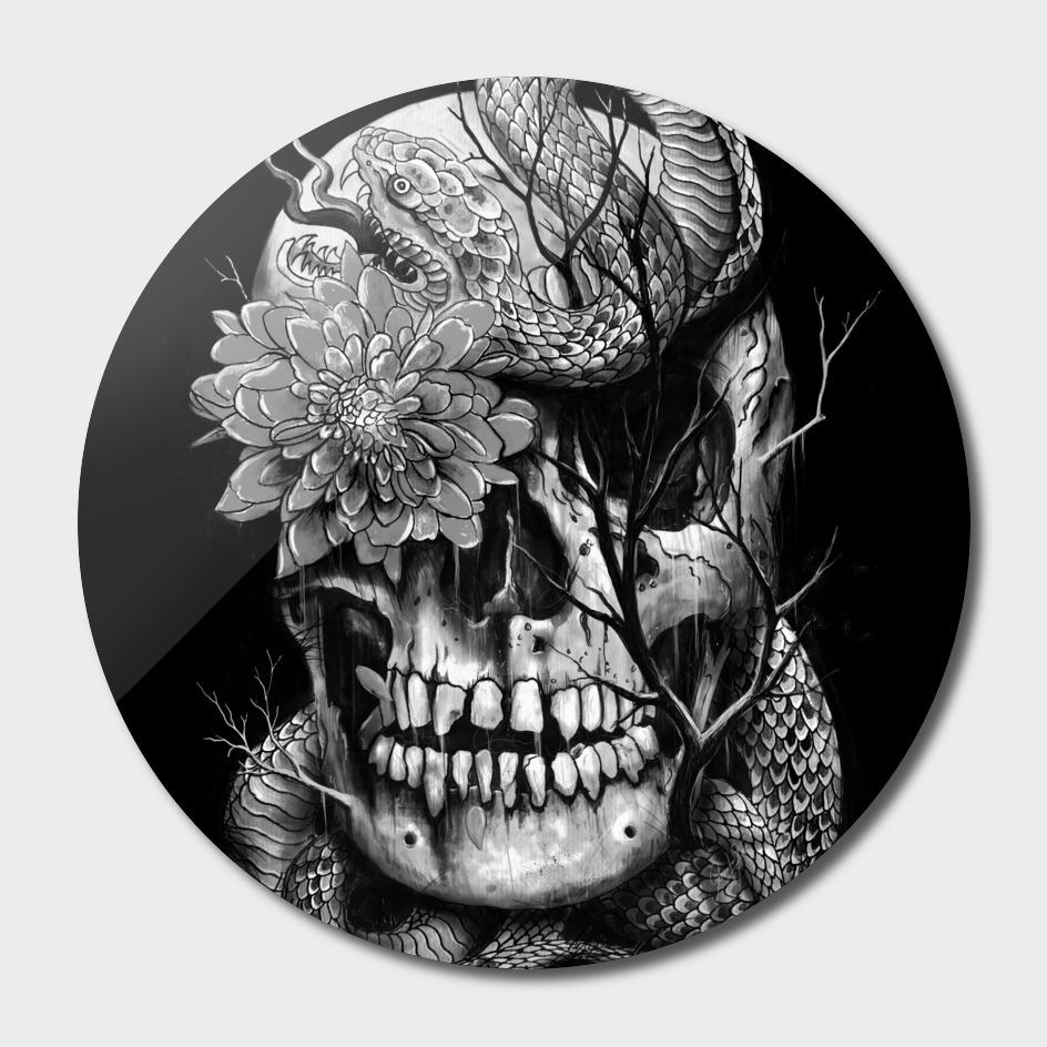 Sake and Skull