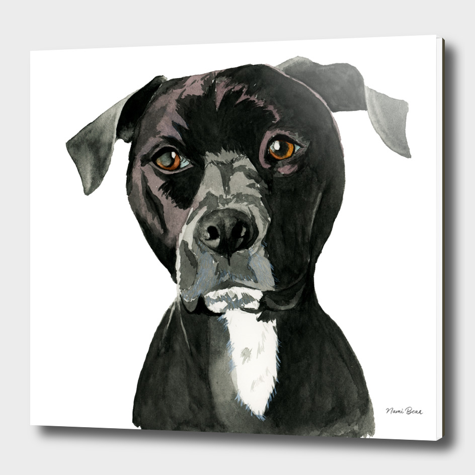 """Contemplating"" Pit Bull Dog Painting"