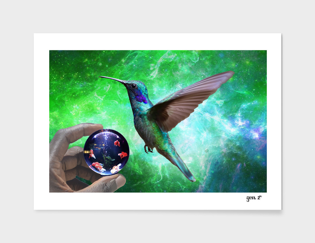 Colibri and the pisces by GEN Z