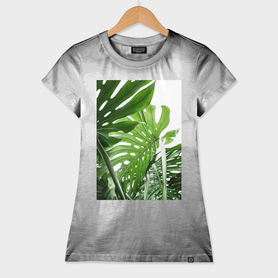 Monstera Jungle