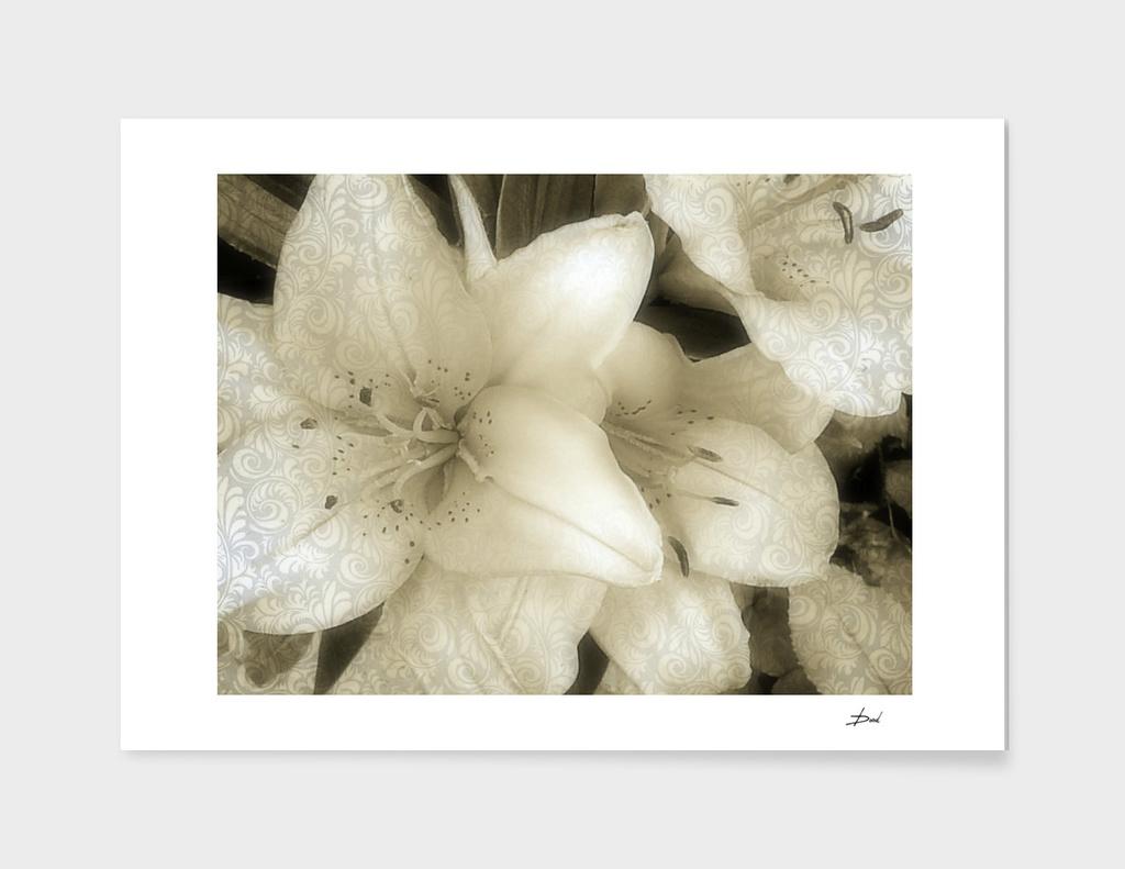 Baroque Lilies