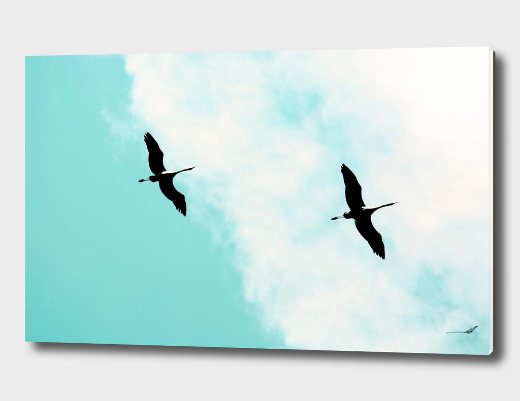 Crane(s) V