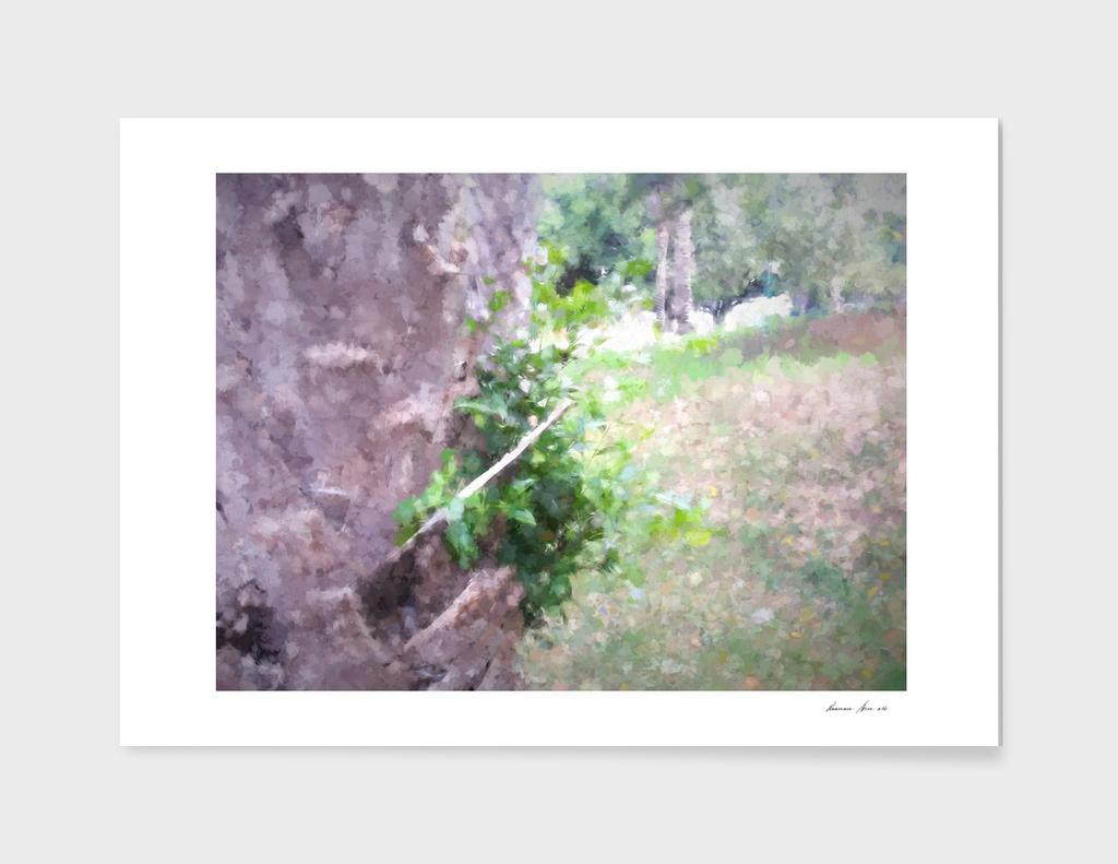 The Raanana Park 1