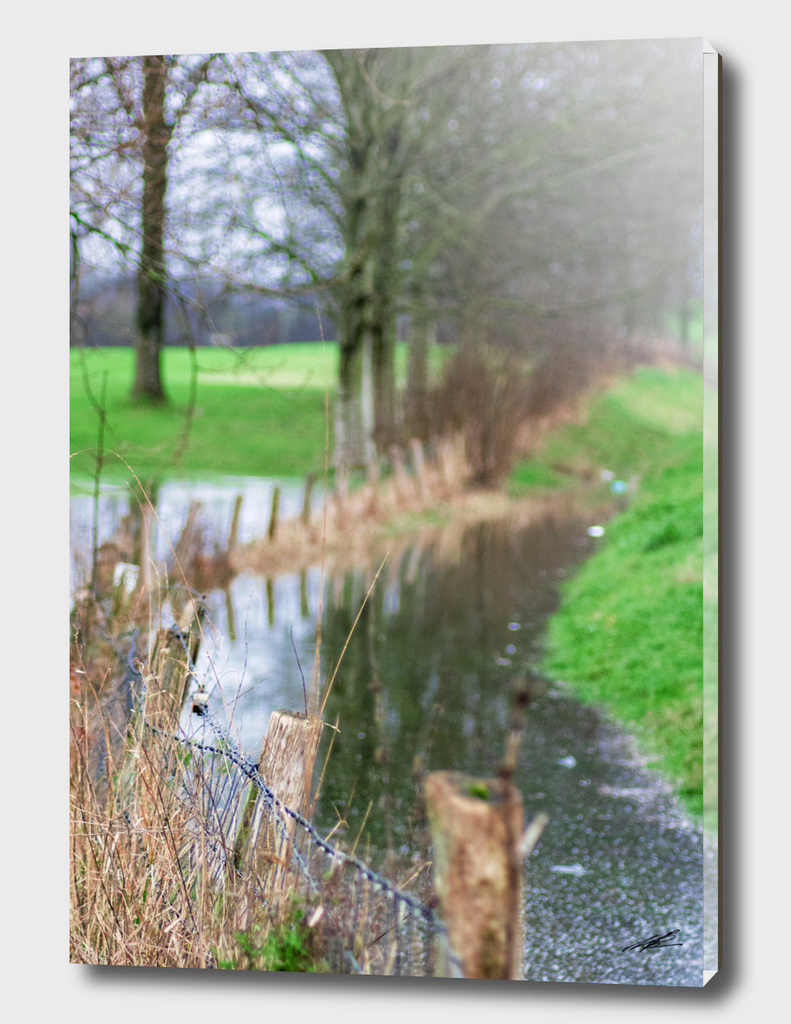 A rainy day in Holland