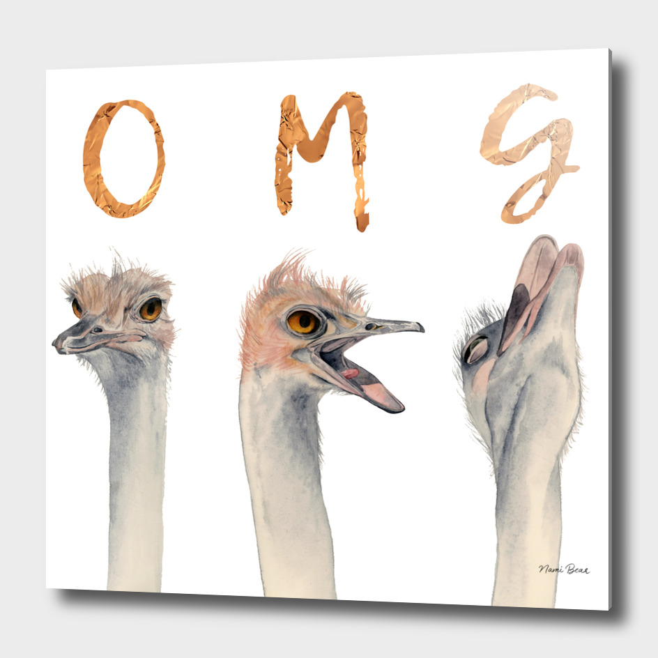 OMG Ostriches
