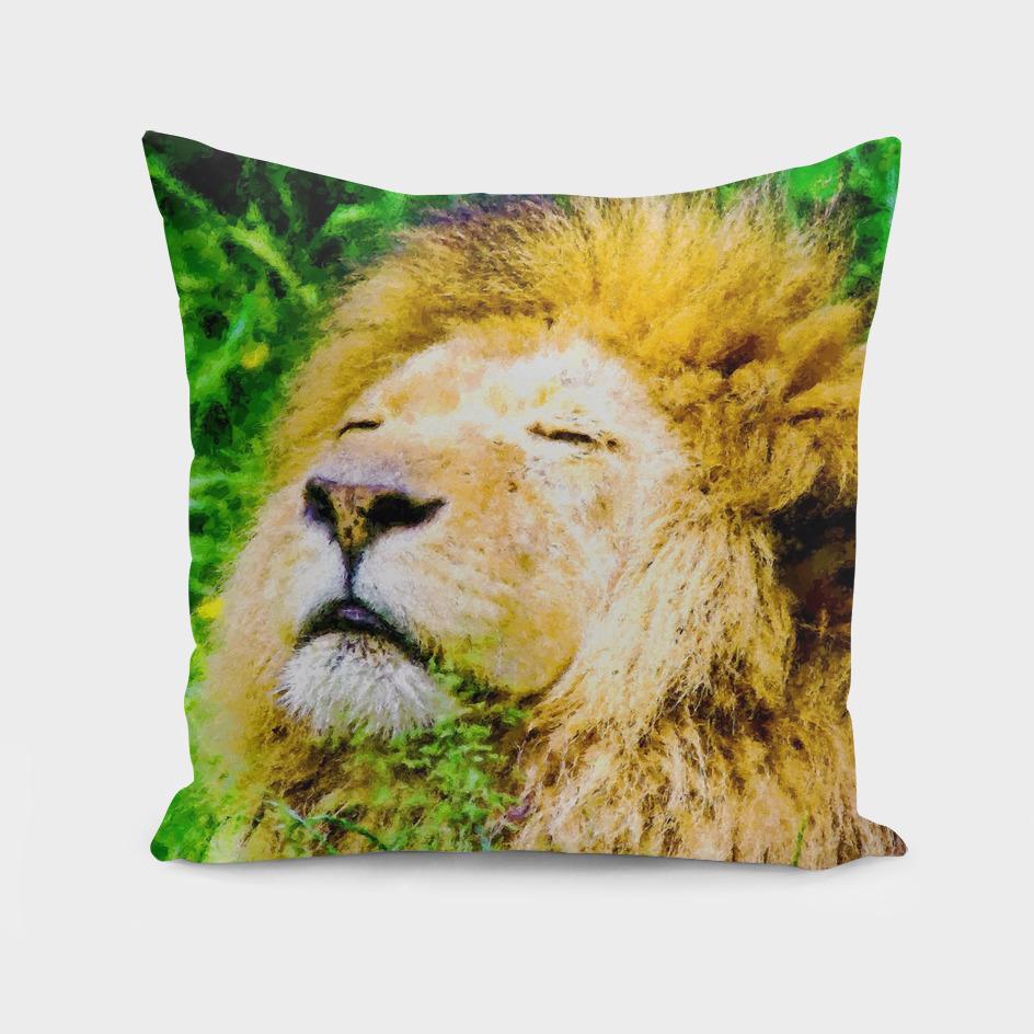 An African Lion