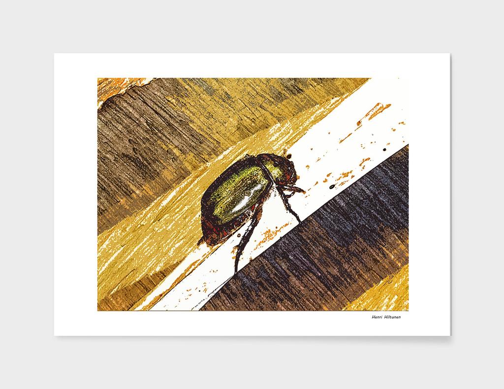 Beetle 5