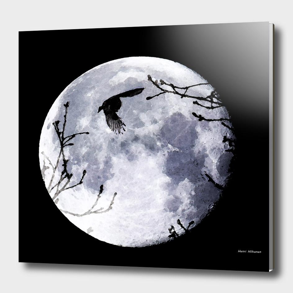 Bird & the moon