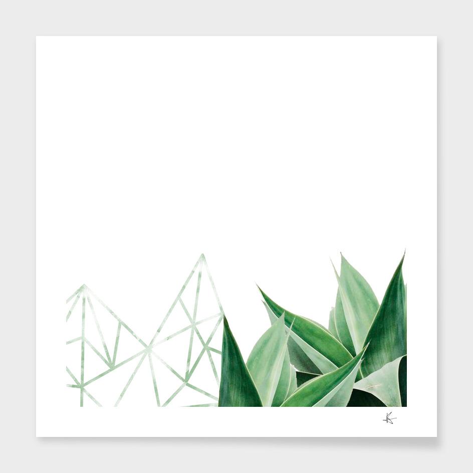 minimal nature