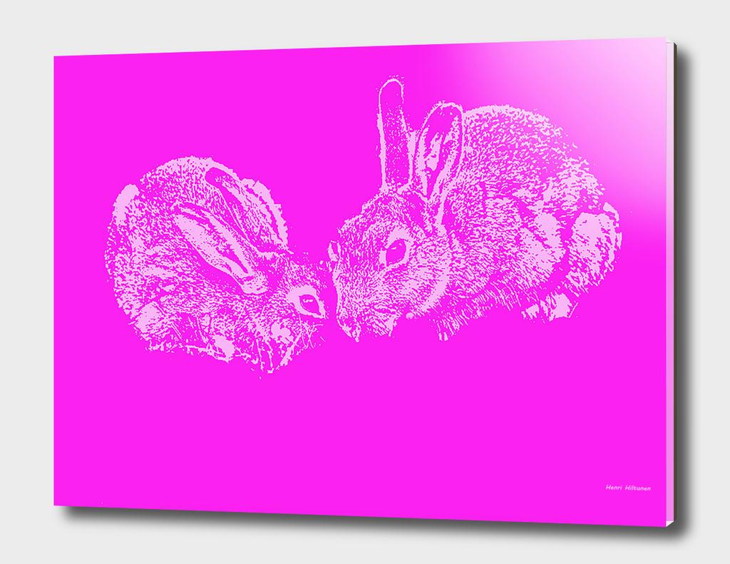 Bunnies 4