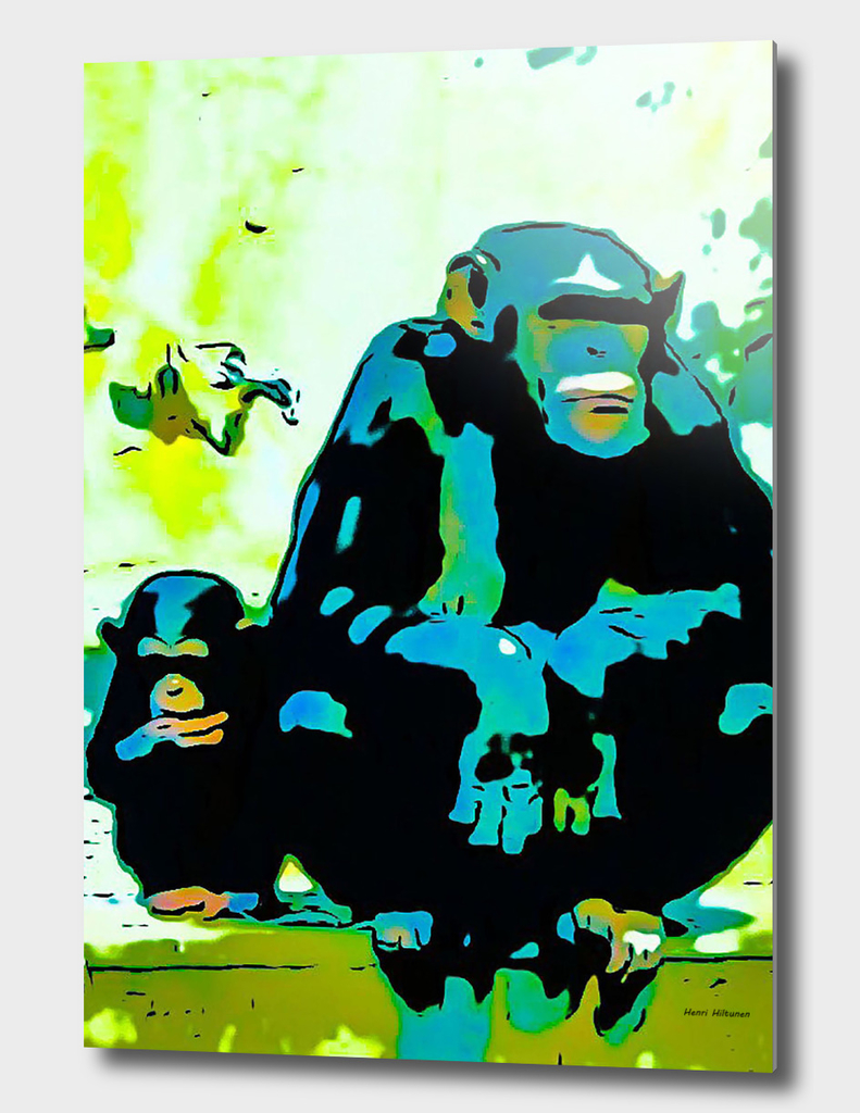 Chimpanzee  8