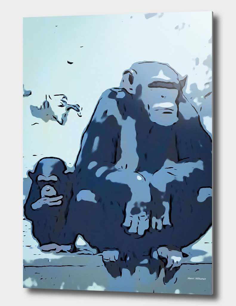 Chimpanzee 9
