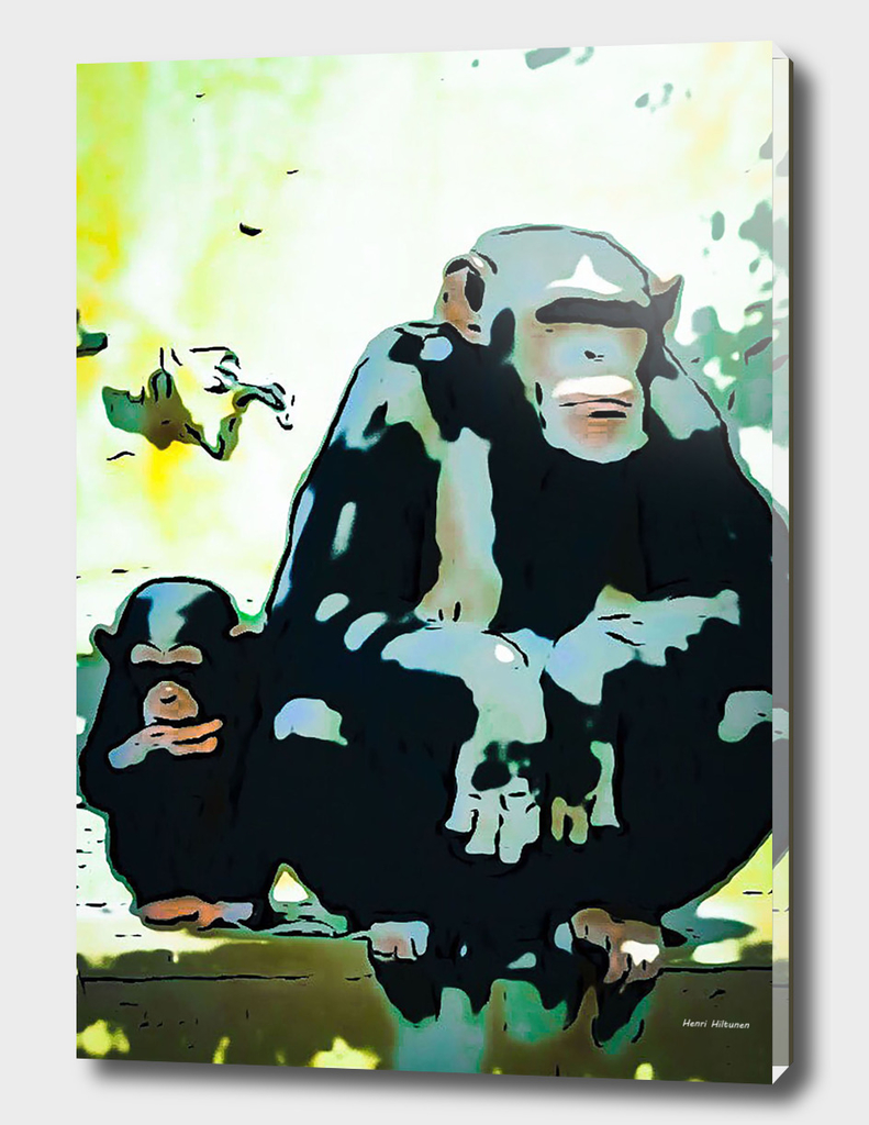 Chimpanzee 19