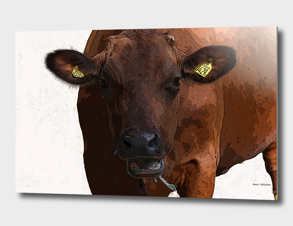 Cow 3