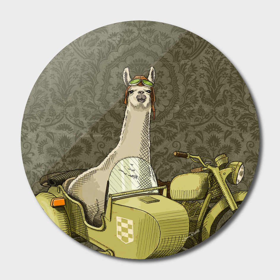 Side Car Lama