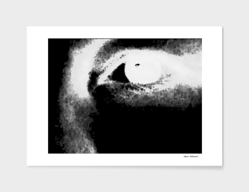 Eye black n white