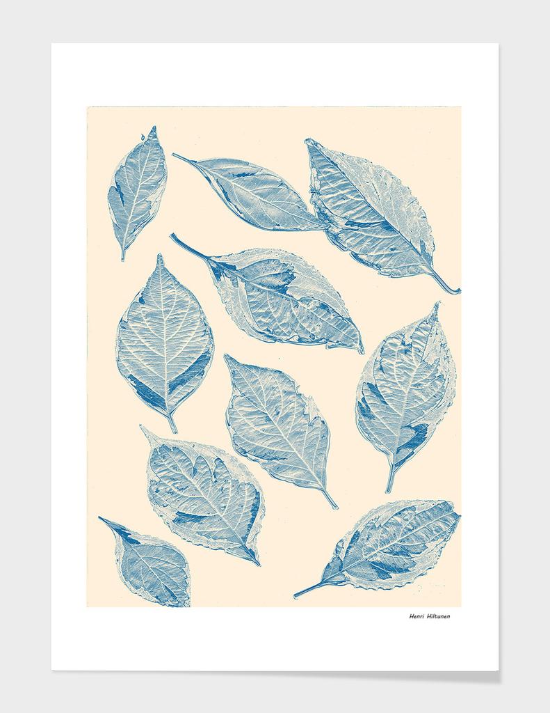 Leaves blue