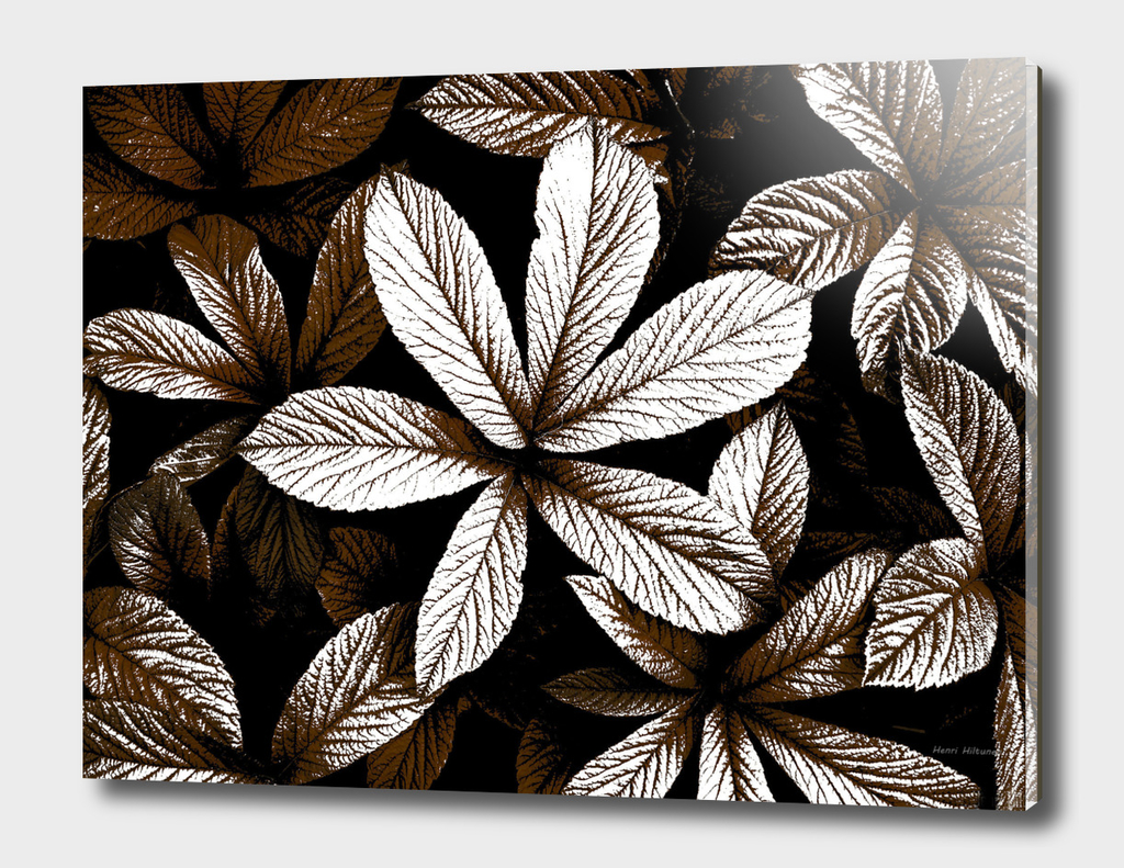 Leaves graphic 1