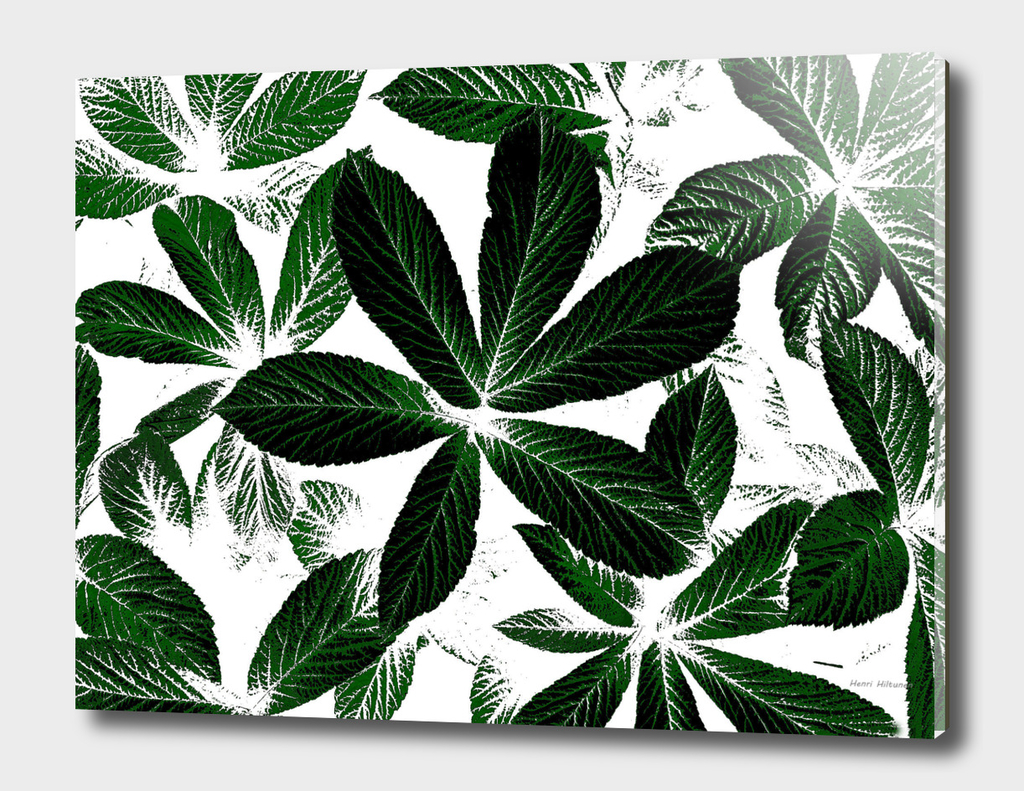 Leaves graphic 6