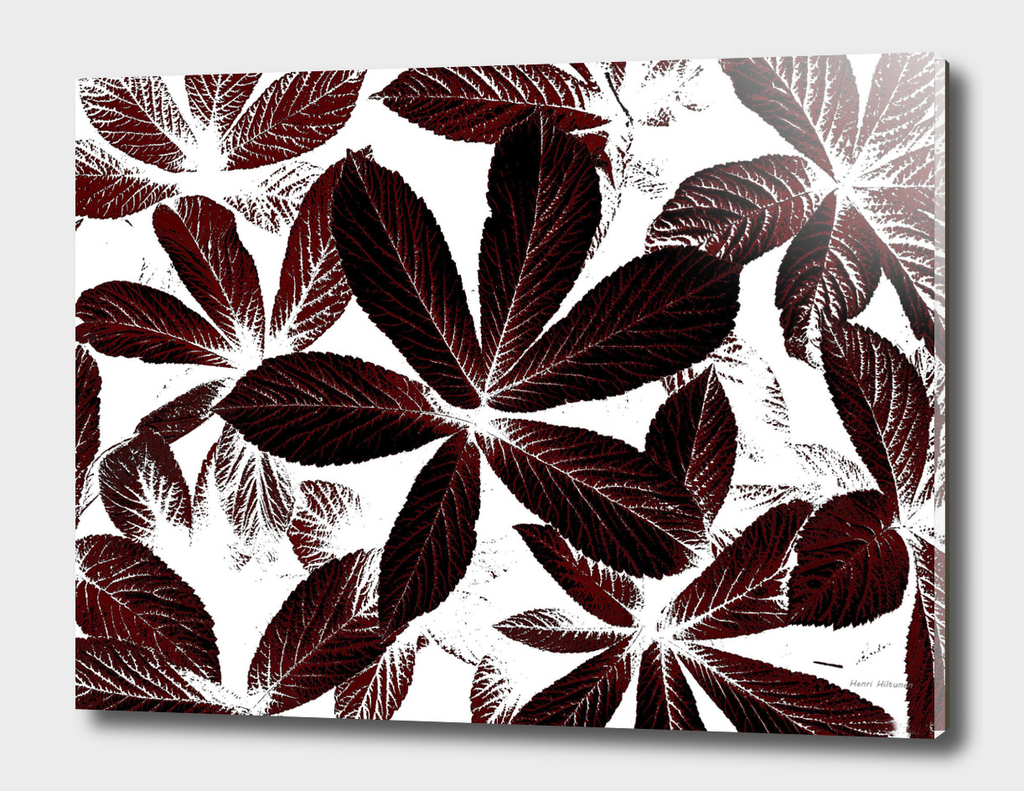 Leaves  graphic 9
