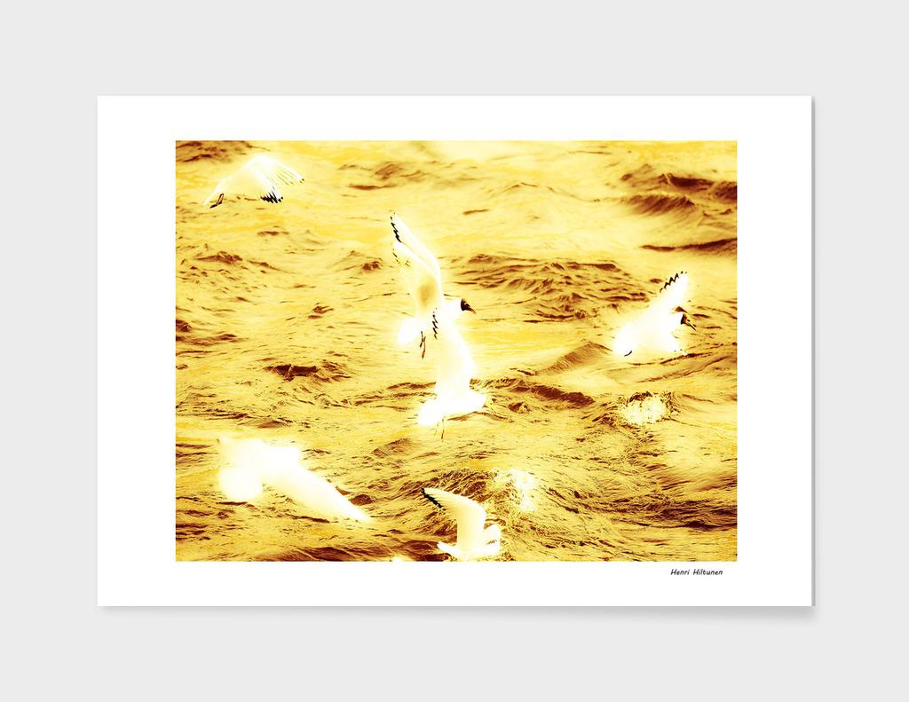 Seagull 10