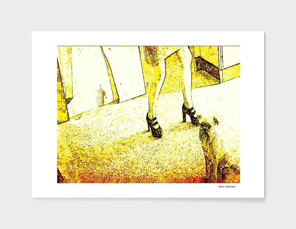 St: Simeon 19 Griffon Bruxellois