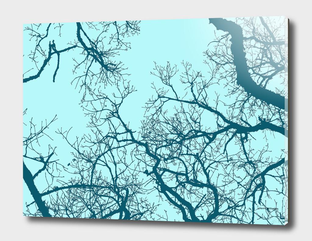 Trees 20