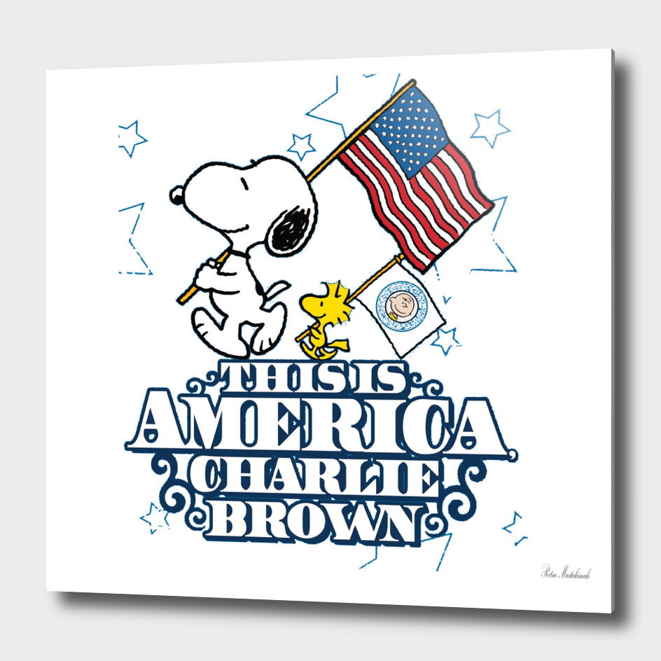 This is America Charlie Brown Snoopy Box Art
