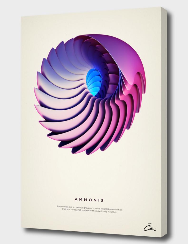 Ammonis