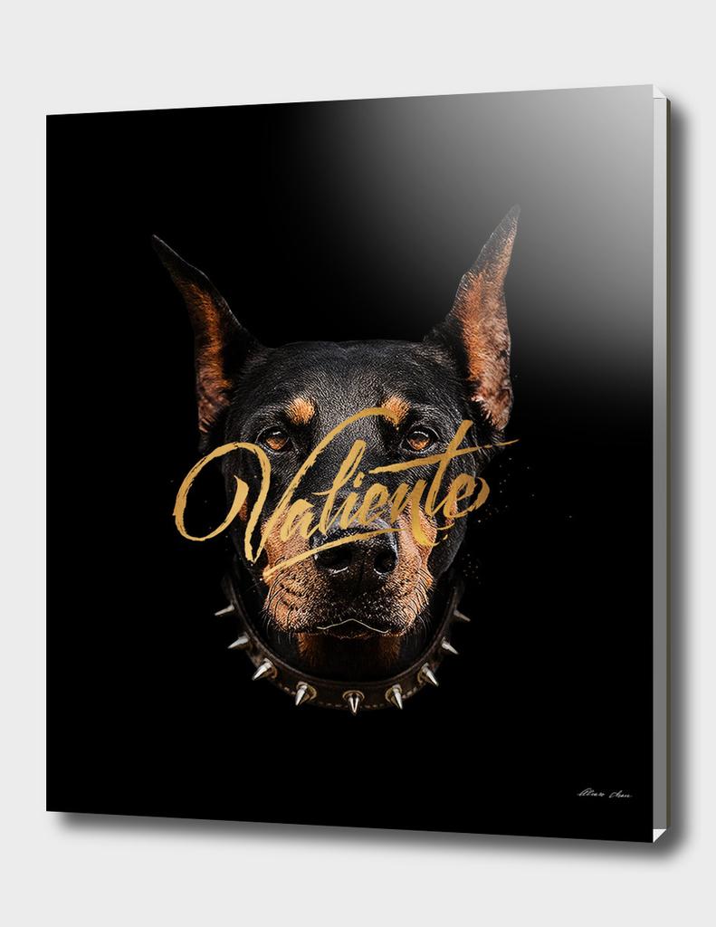 Wild Lettering, Valiente.