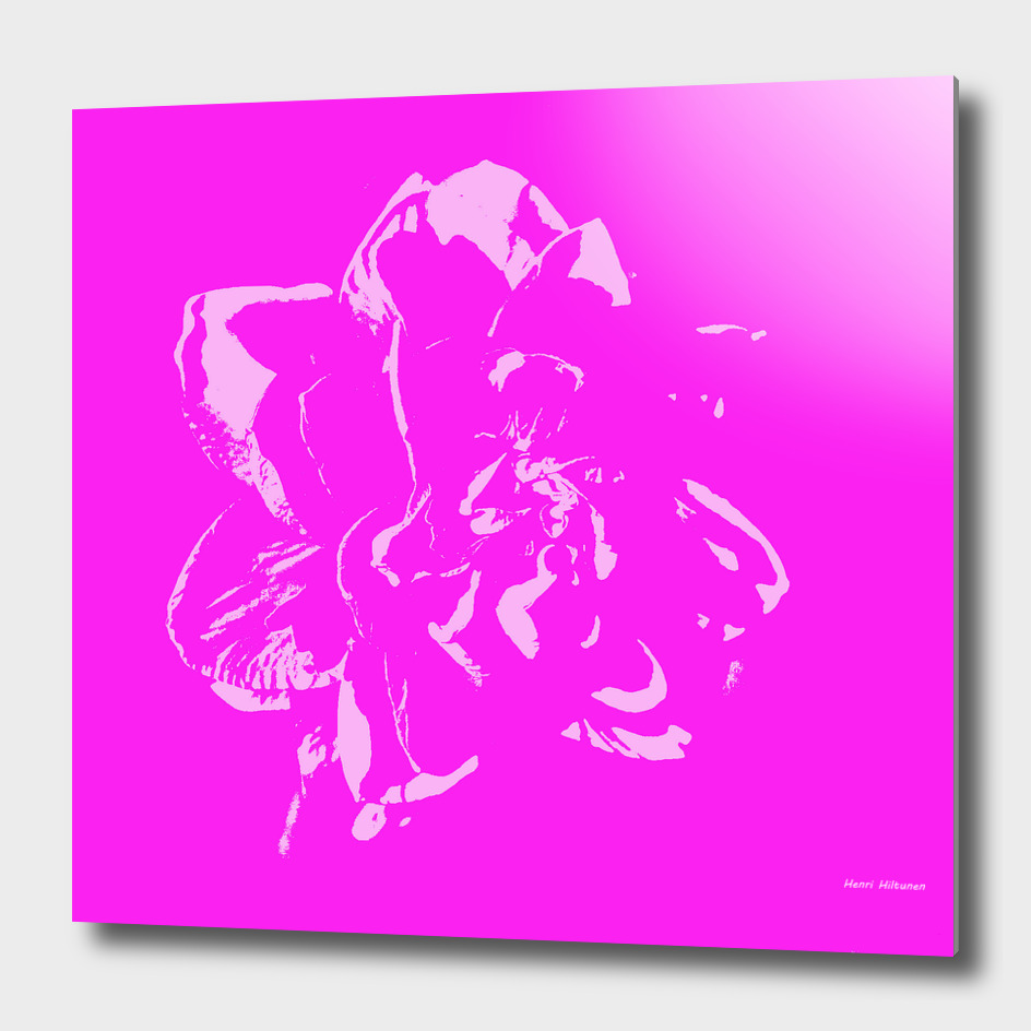 Flower  20