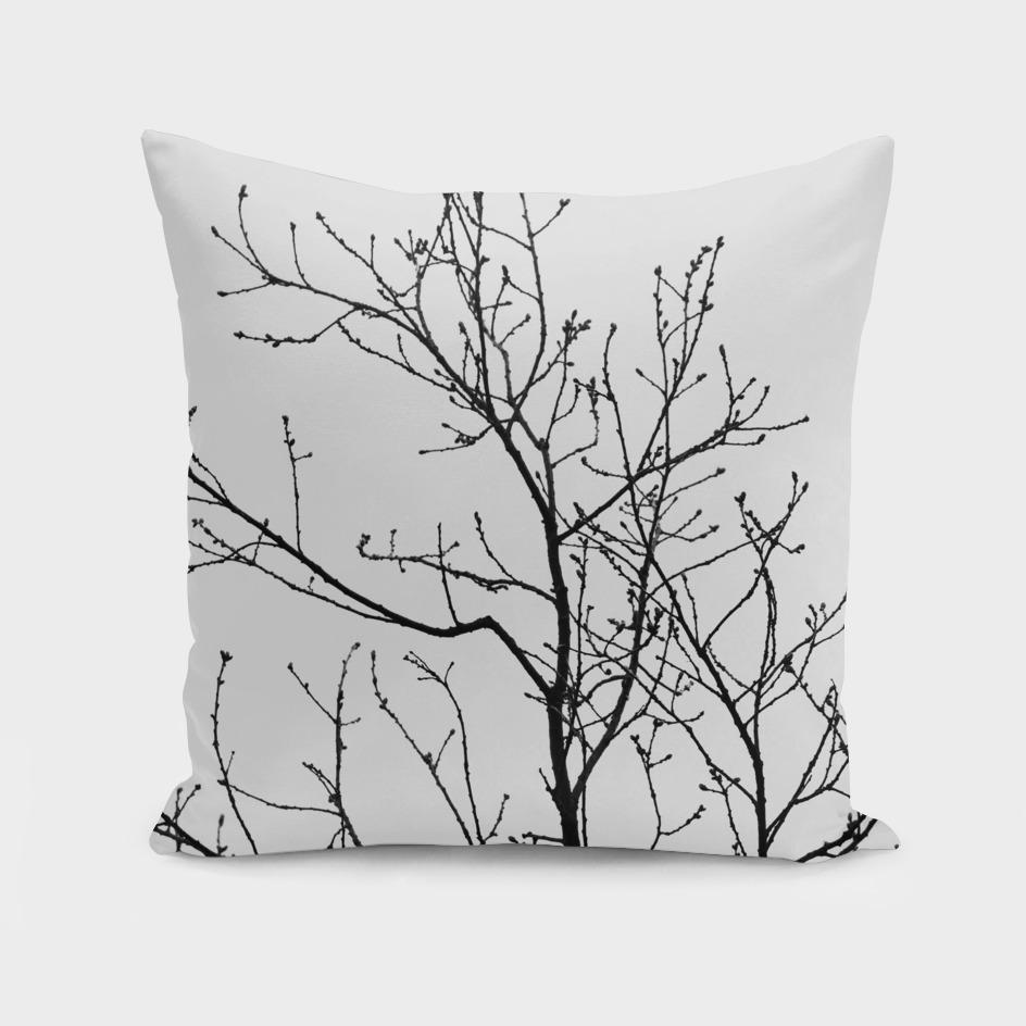 Branches  Black & White