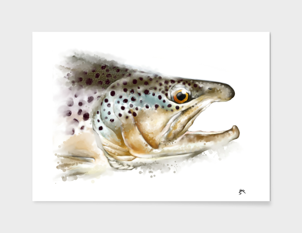 Trout head