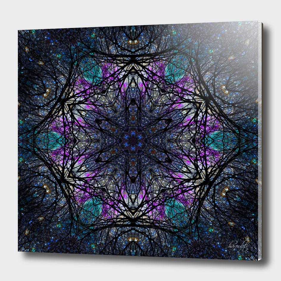 floral space mandala
