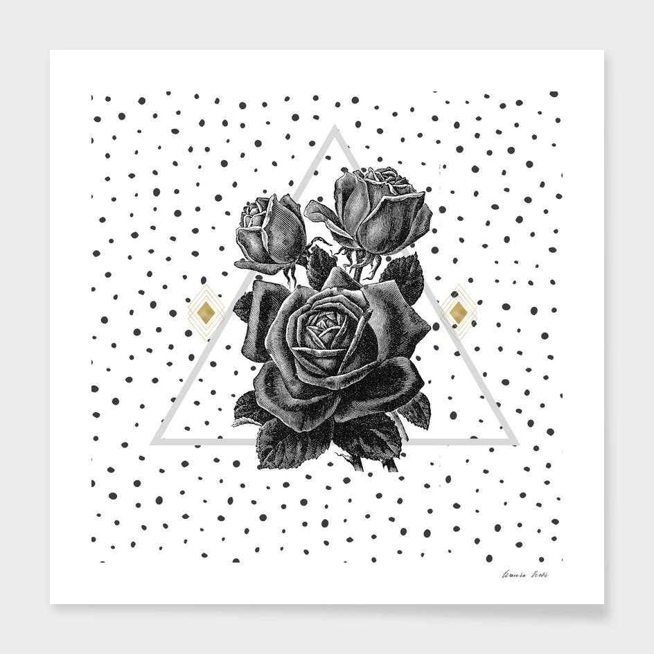 Black Rose and Pyramid