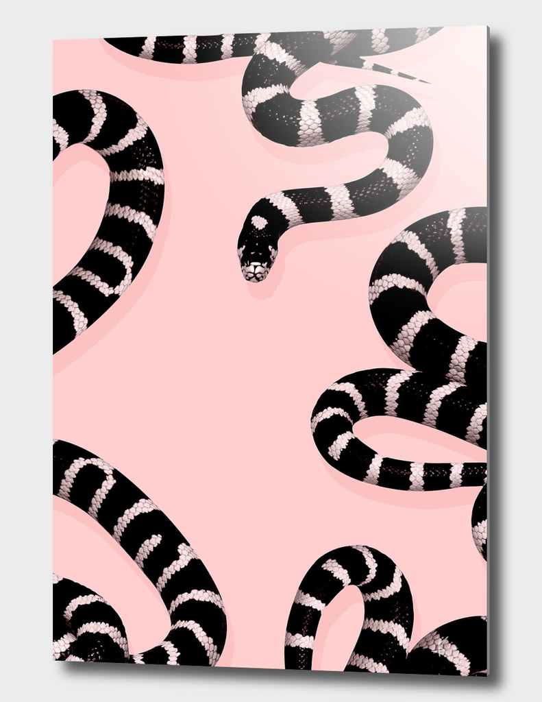 snake pink