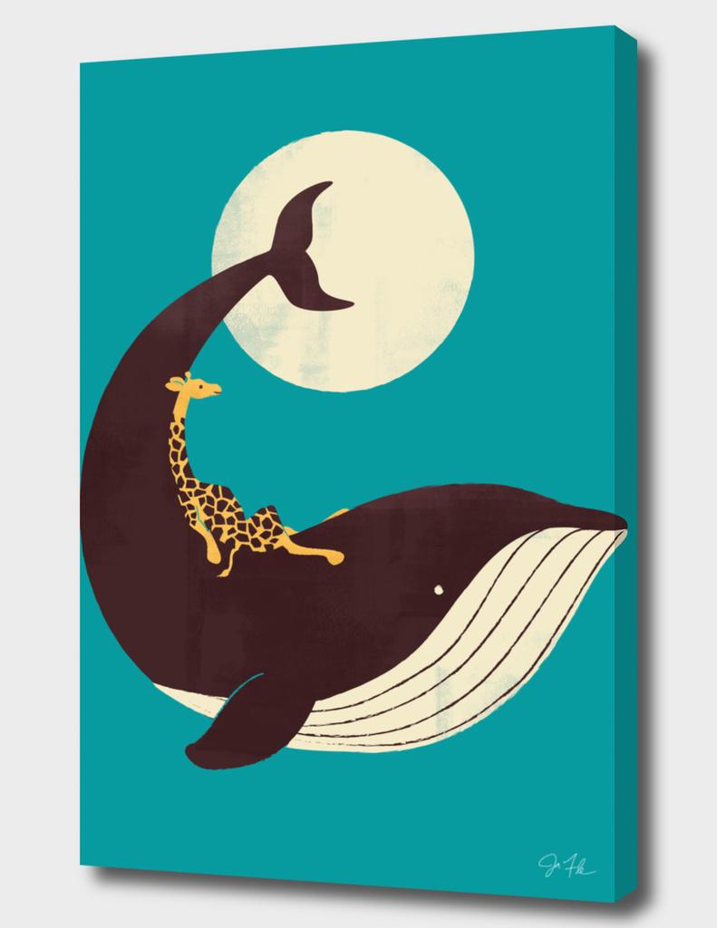 The Giraffe & the Whale