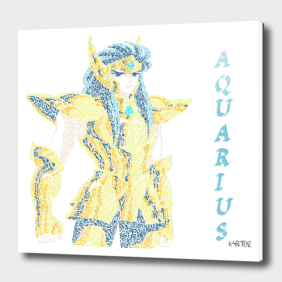 Saint Seiya - Knightofthezodiac - Aquarius