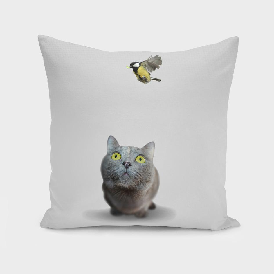 Cat Birder