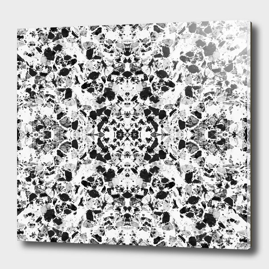 Elegant Black and White Terrazzo Pattern