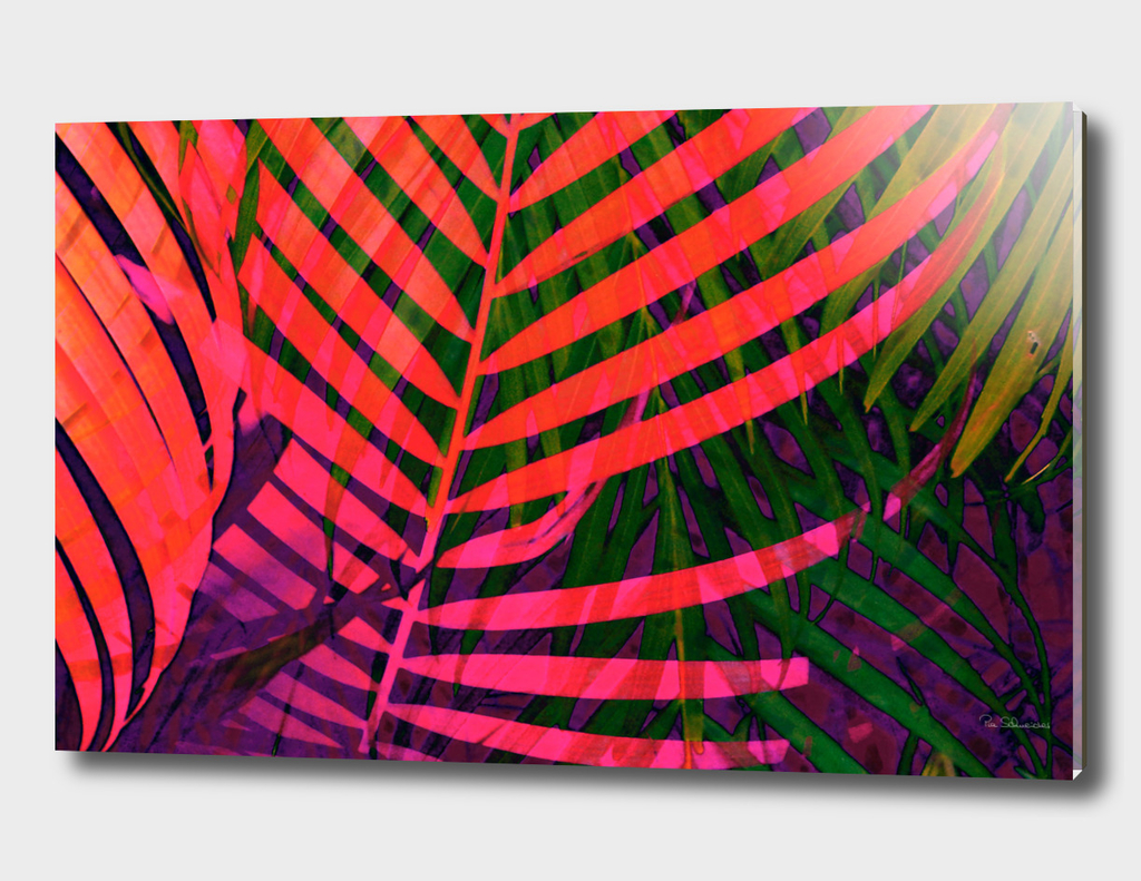 COLORFUL TROPICAL LEAVES no7