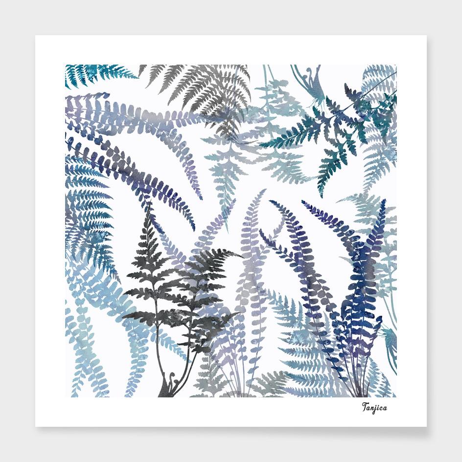 Lush Ferns in Blue