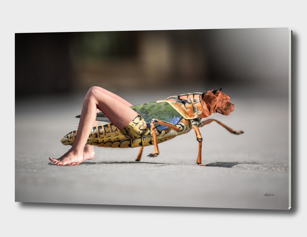 Chimera Bug
