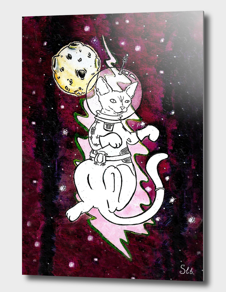 Cosmic Space Cat