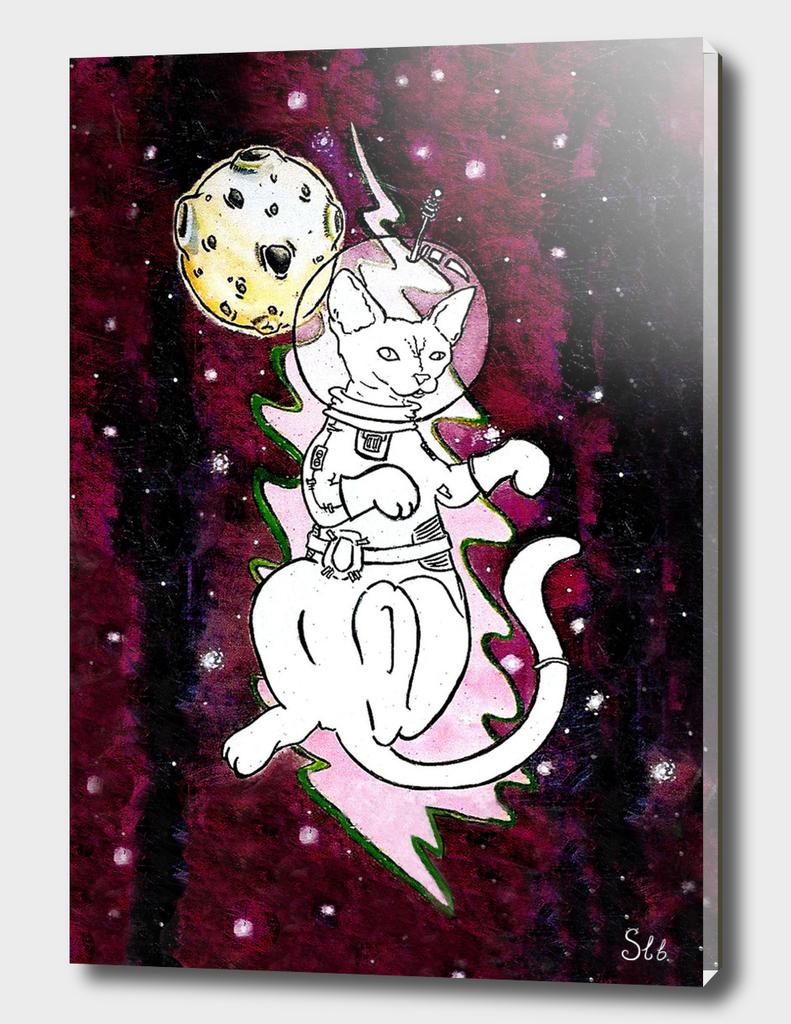 Cosmic Space Cat