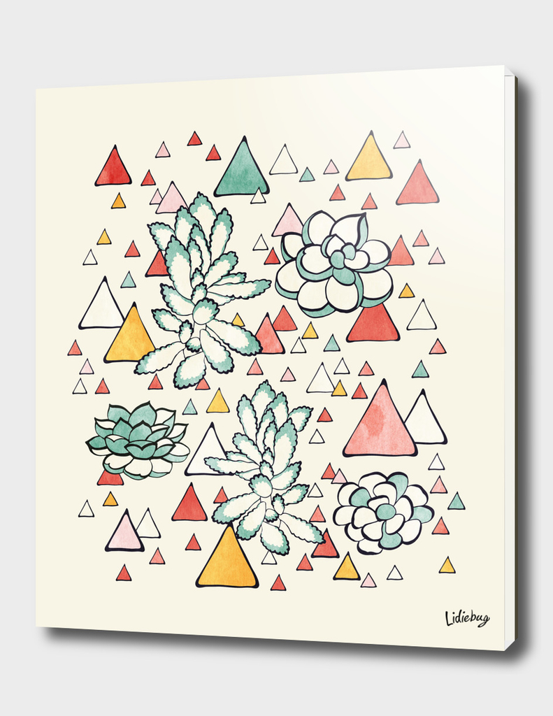 Succulent and triangles