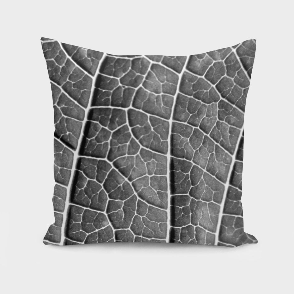 LEAF STRUCTURE BLACK AND WHITE no2