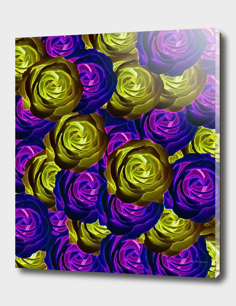 blooming rose texture pattern abstract in purple and yellow