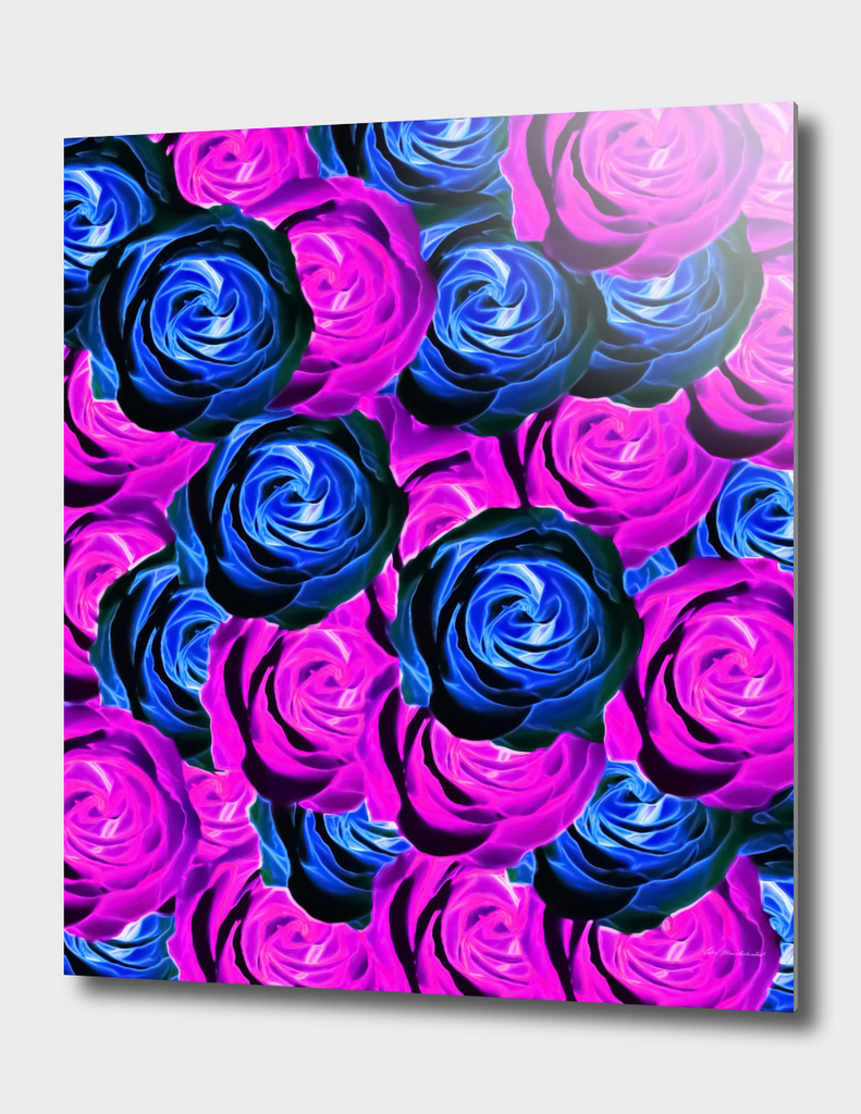 blooming rose texture pattern abstract in pink and blue