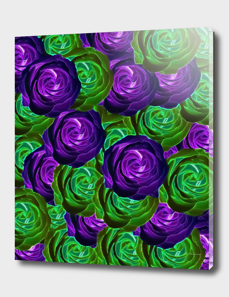 blooming rose texture pattern abstract in purple green